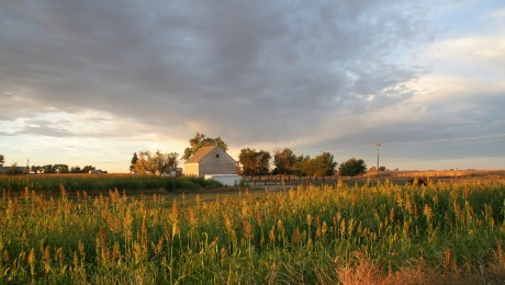 Farm Bill Impacts USDA Rural Housing Lending Availability